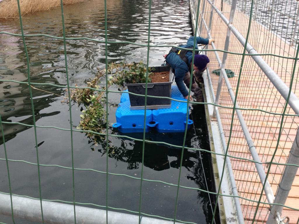 Portavasi galleggiante Piattaforma galleggiante pontili galleggianti